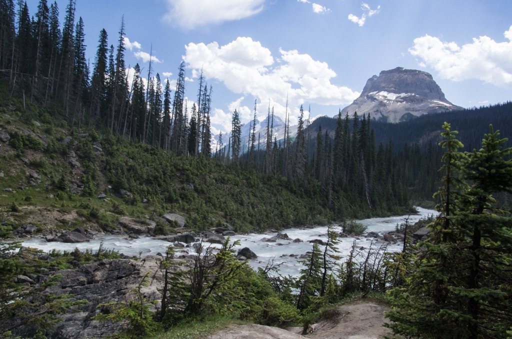 The river below Takakkaw Falls
